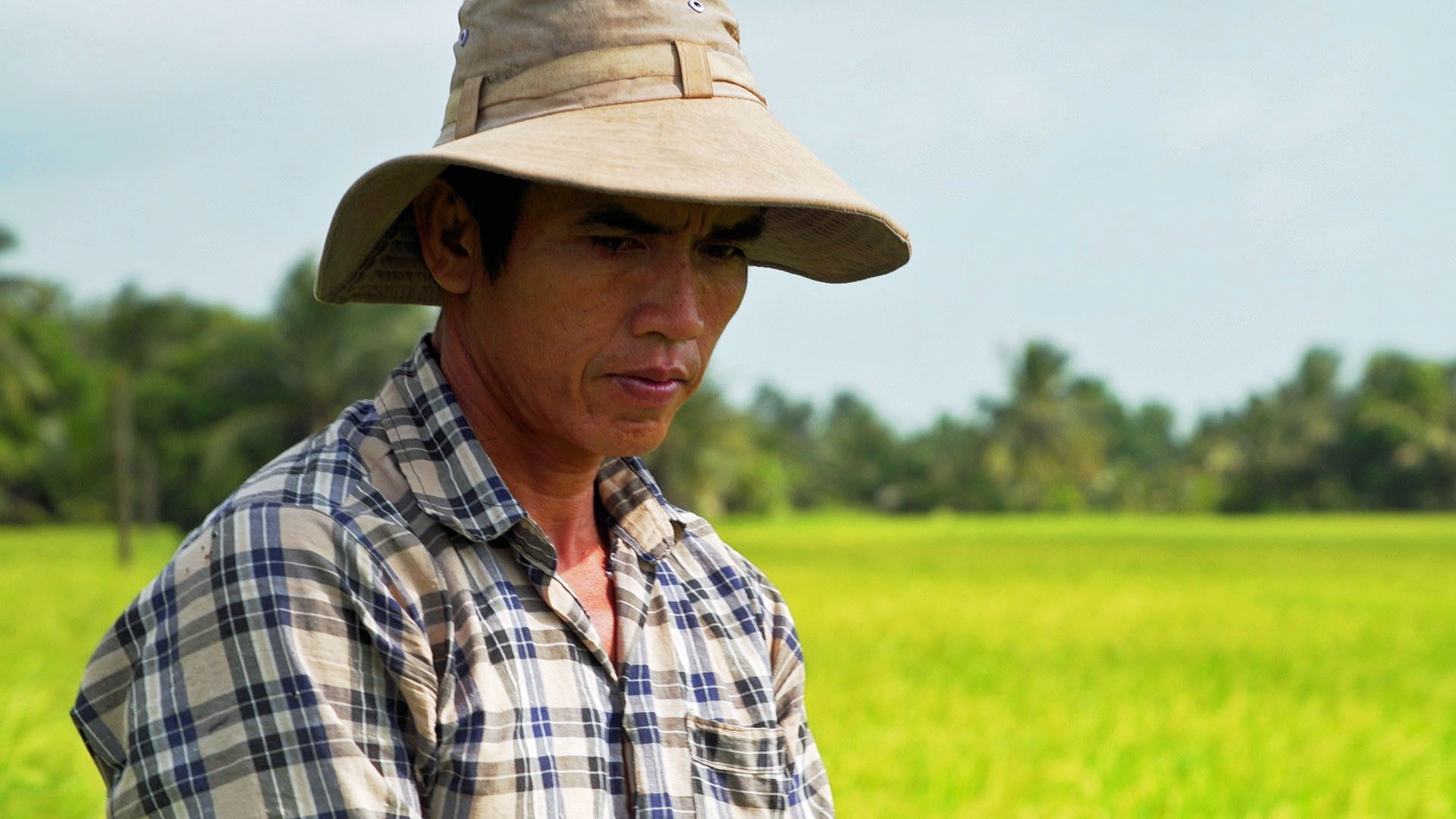 A portrait of Phan Thi Hang