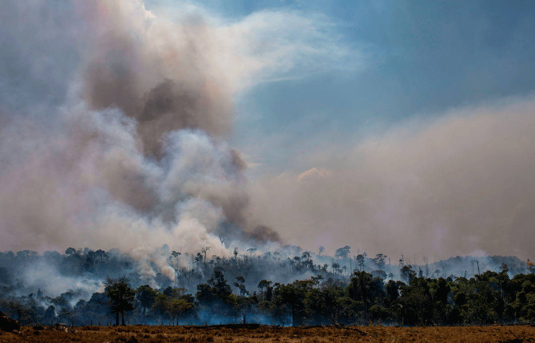 Plumes of smoke rising from the Amazon rainforest in Brazil