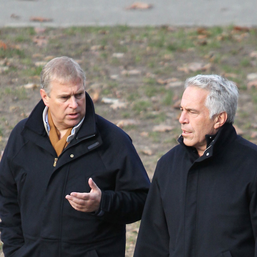 Andrea Prince Sex prince andrew 'appalled'jeffrey epstein's sex abuse