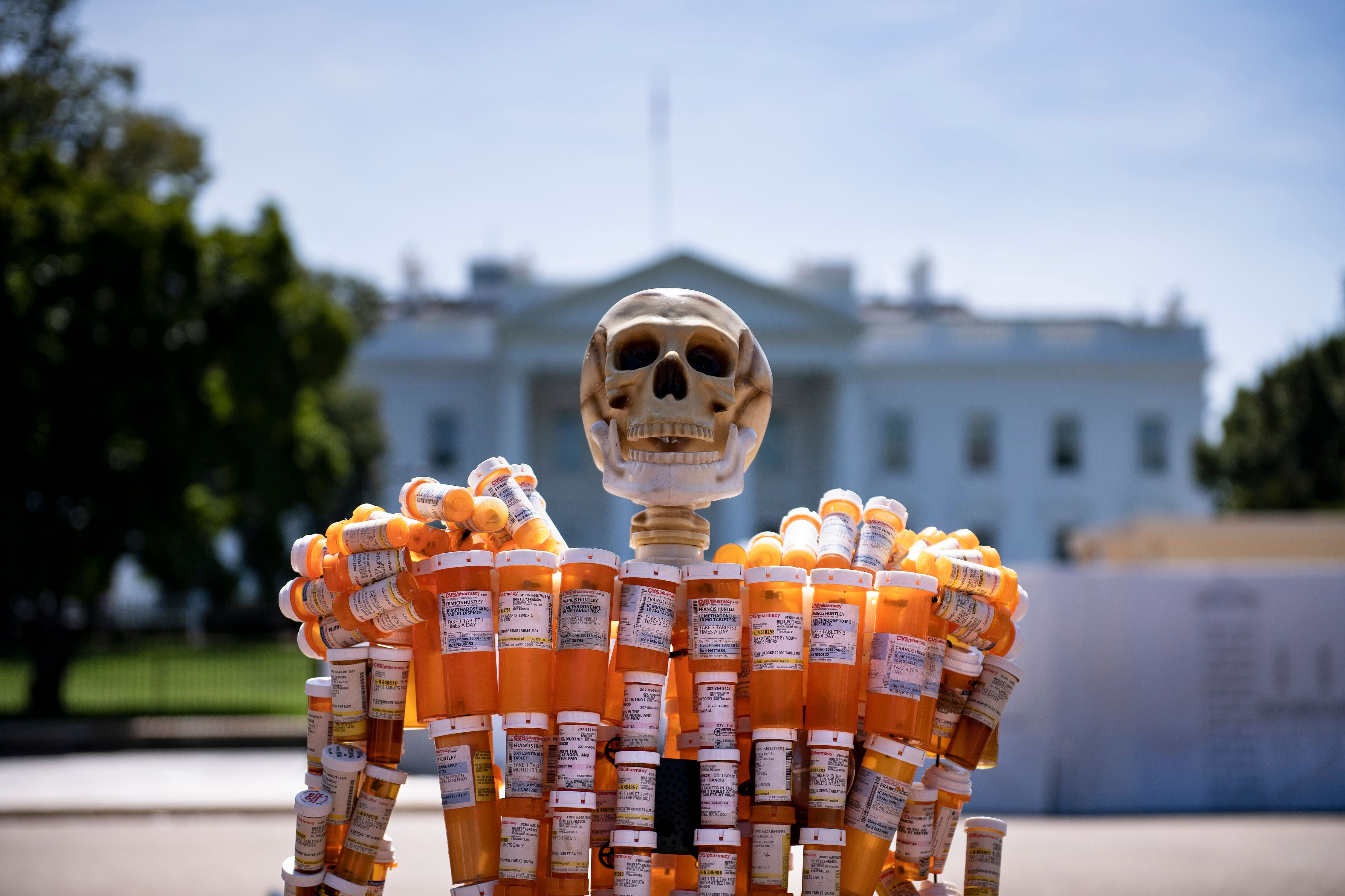 A skeleton made out of OxyContin bottles, displayed at a protest in front of the White House