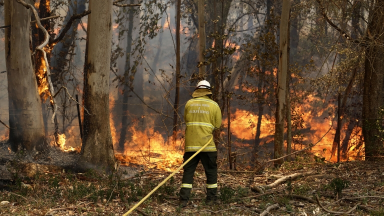 A fireman tackles a bushfire in Taree, New South Wales