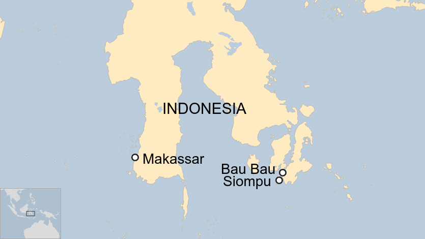 Indonesian needlefish boy: 'A fish jumped out the water and stabbed my neck'