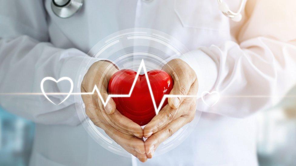 Corazón y ritmo cardiaco