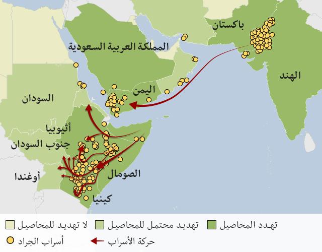 خريطة تظهر كيف تغزو أسراب الجراد القرن الإفريقي على جانبي البحر الأحمر والحدود الباكستانية الهندية. ويتحرك الزحف عبر إثيوبيا وكينيا ويمكن أن ينتقل لبلدان أخرى.