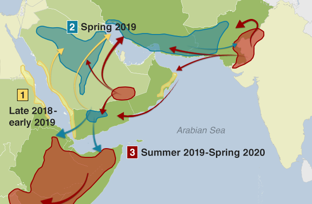 Map showing how the locust swarms developed over a number of seasons and moved from the Arabian Peninsula to the Horn of Africa and the India-Pakistan border