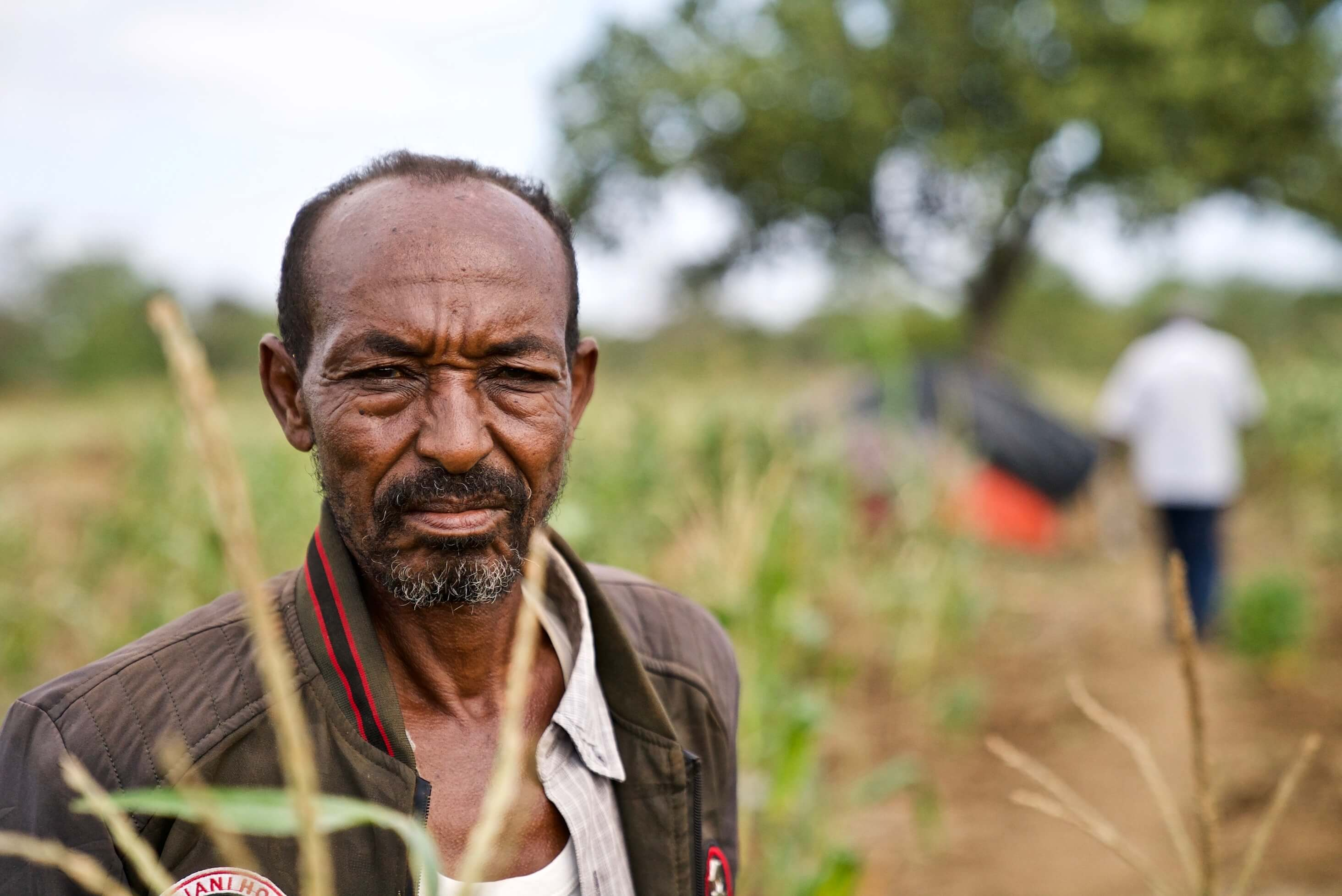 Image of Ali Bila Waqo, whose crops have been devastated by locusts