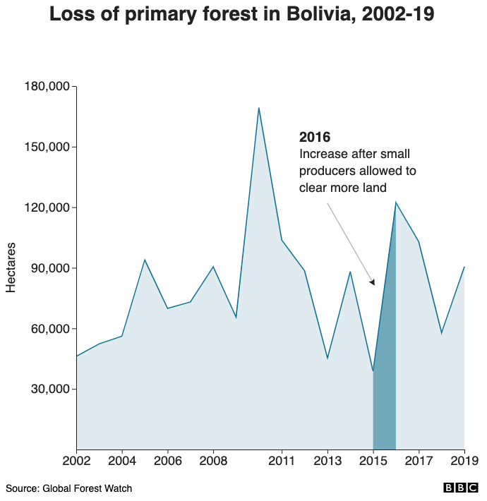 Loss of primary forest in Bolivia, 2002-19