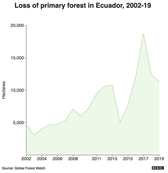 Loss of primary forest in Ecuador, 2002-19