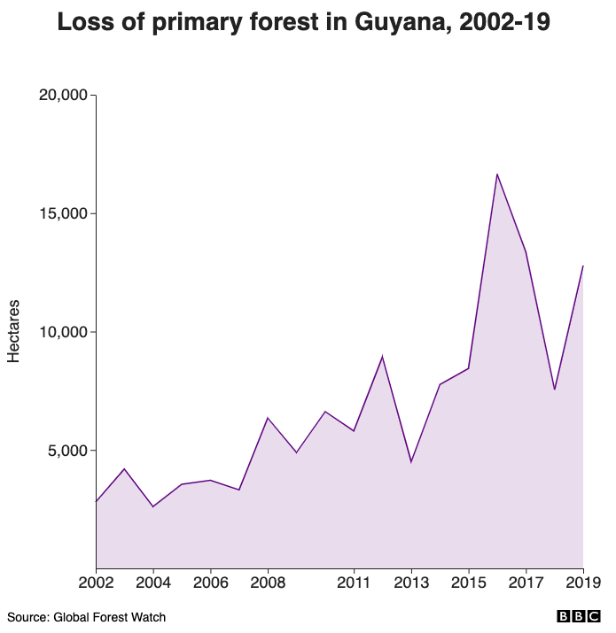 Loss of primary forest in Guyana, 2002-18