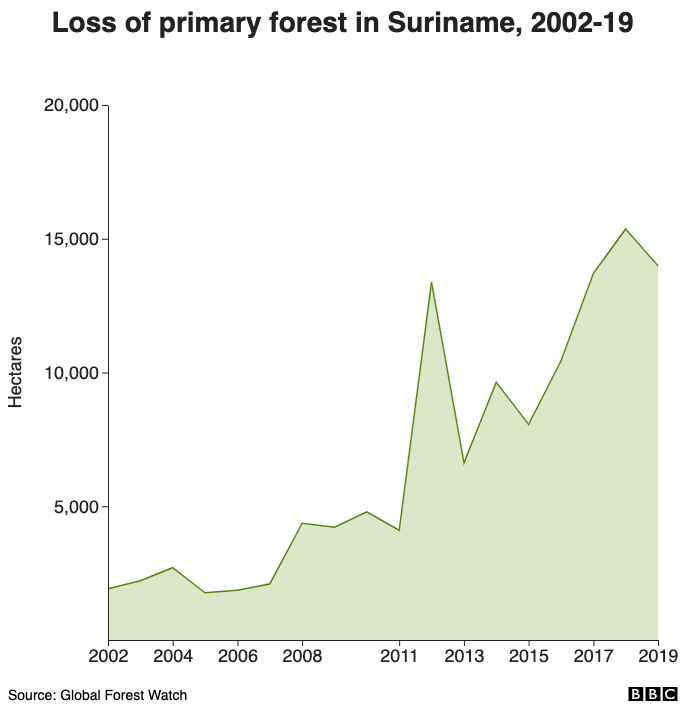 Loss of primary forest in Suriname, 2002-19