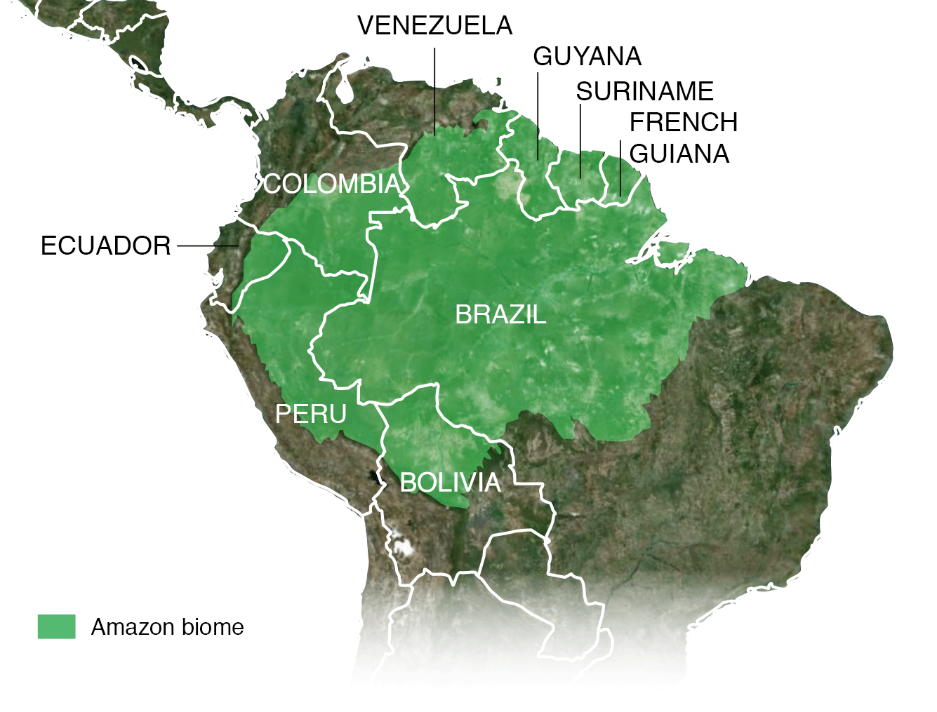 Map of Amazon biome including Peru, Bolivia, Ecuador, Colombia, Guyana, Suriname, French Guiana and Brazil and Venezuela