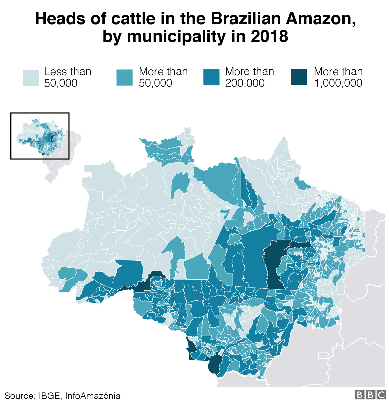 Graphic showing numbers for heads of cattle in Brazil
