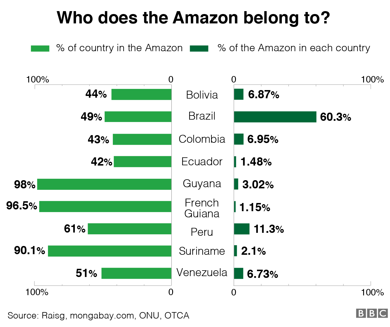 Graphic showing how much of the Amazon belongs to each country