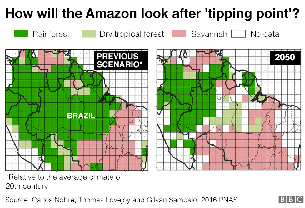Images show how vegetation in the Amazon would look after tipping point