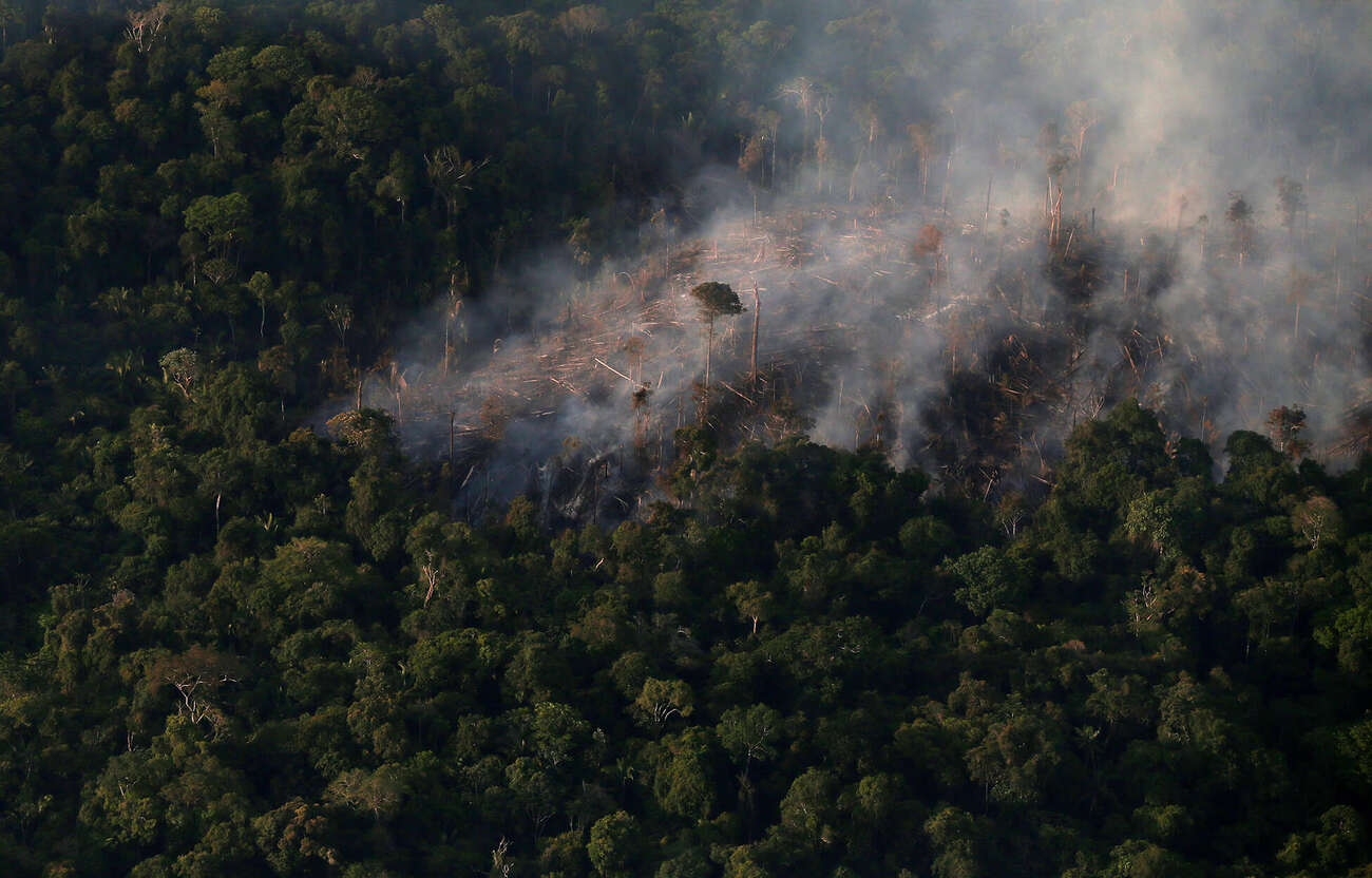 Stretch of felled trees in Brazilian Amazon