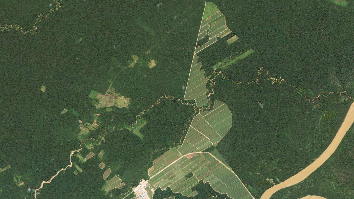 Repeated shots can reveal changes such as deforestation here in the Amazon