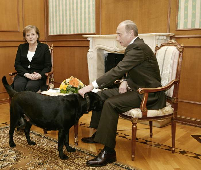 Putin allowed his labrador into the room where he was meeting Merkel, despite her fear of dogs