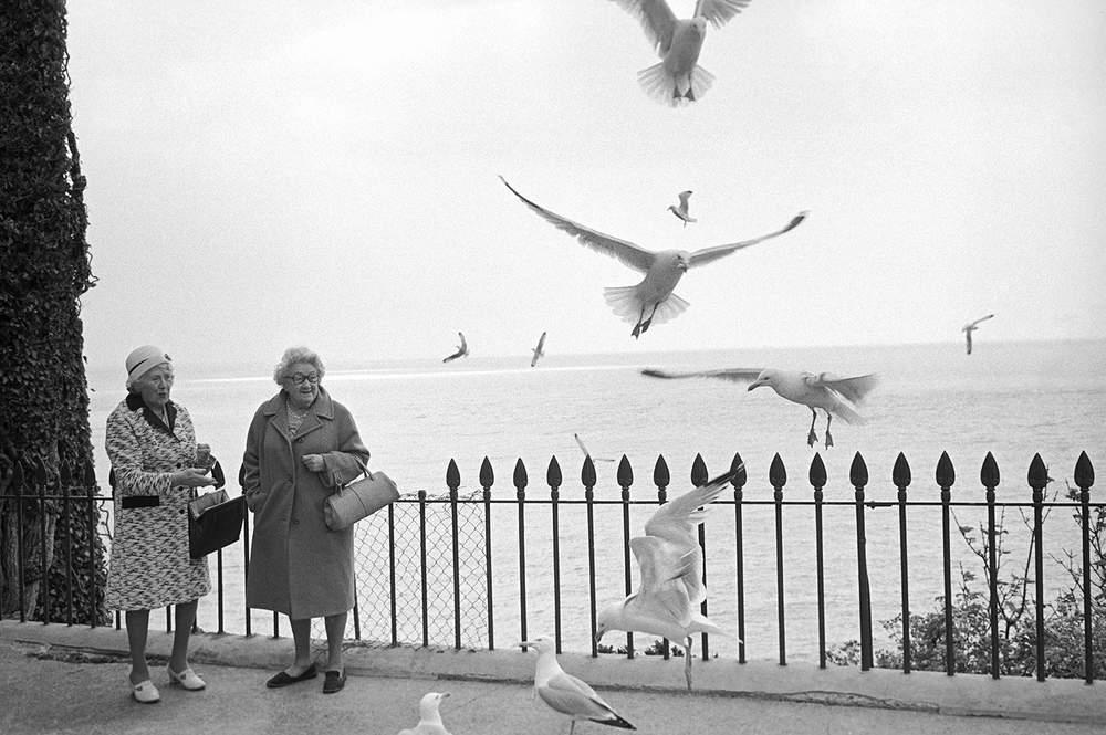 Tenby, 1974 - feeding the seagulls, Hurn
