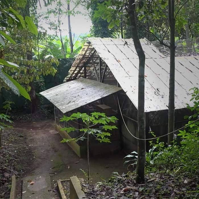 Cikananga Conservation Breeding Centre