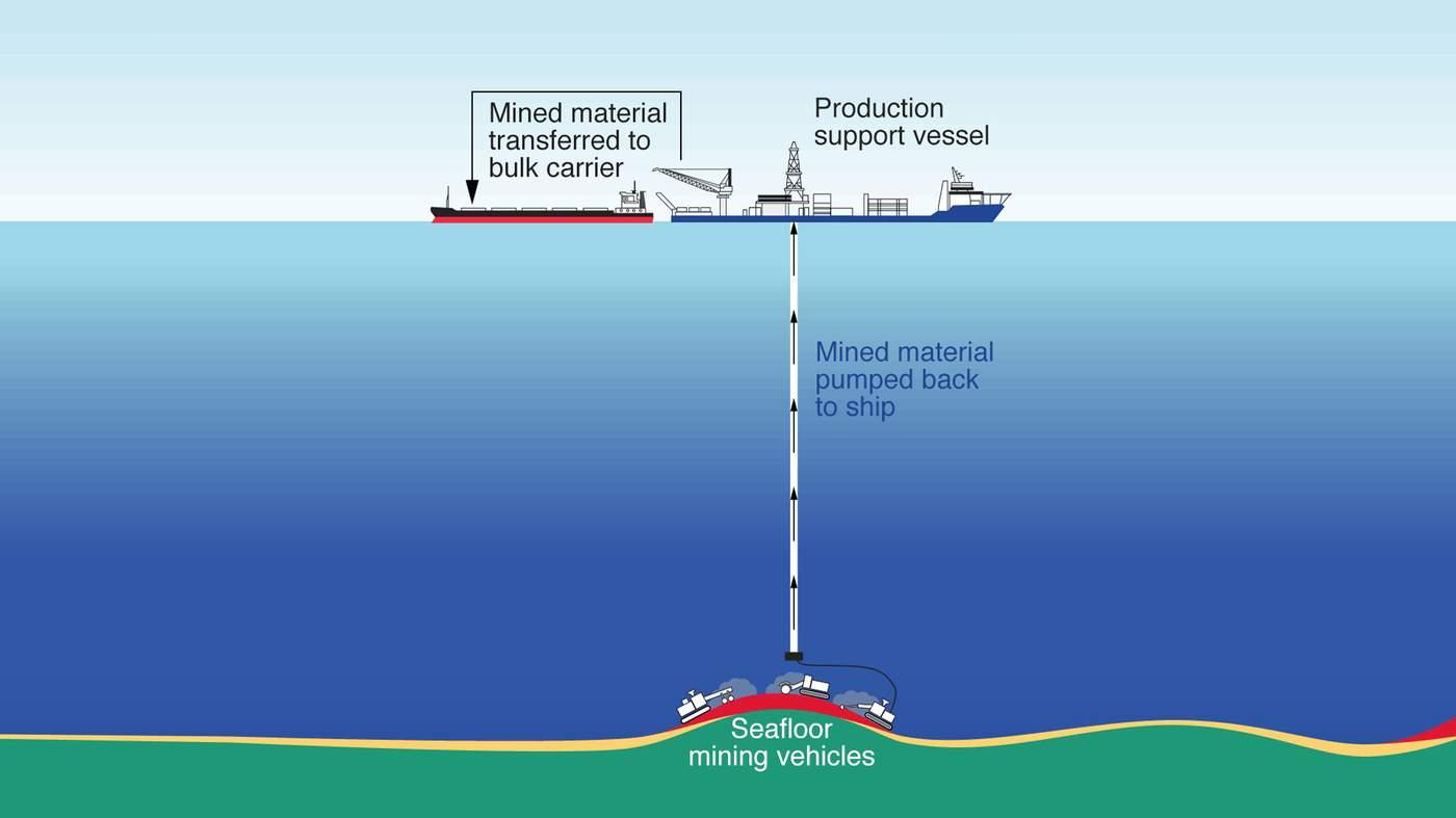 The secret on the ocean floor - BBC News