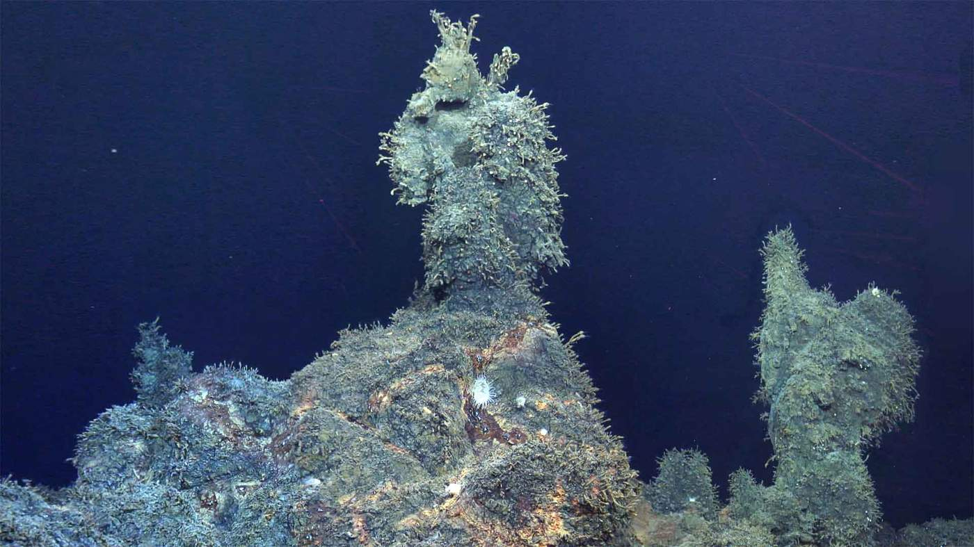 The Secret On The Ocean Floor Bbc News