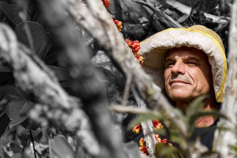 ريناتو دي ميلو سيلفا يفحص نوعية جديدة من النباتات