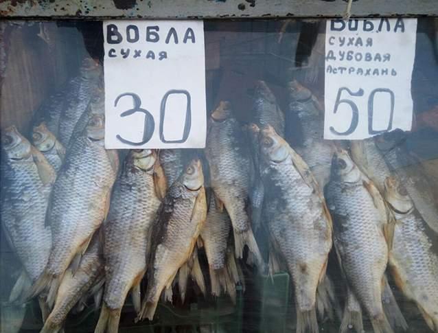 اگر میتوانید بوی بد را تحمل کنید، بهترین سوغاتی سامارا ماهی خشک است