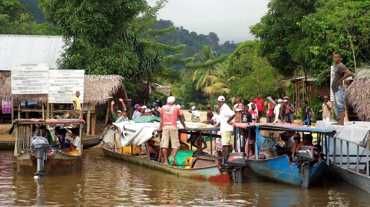 Fighting the vanilla thieves of Madagascar - BBC News