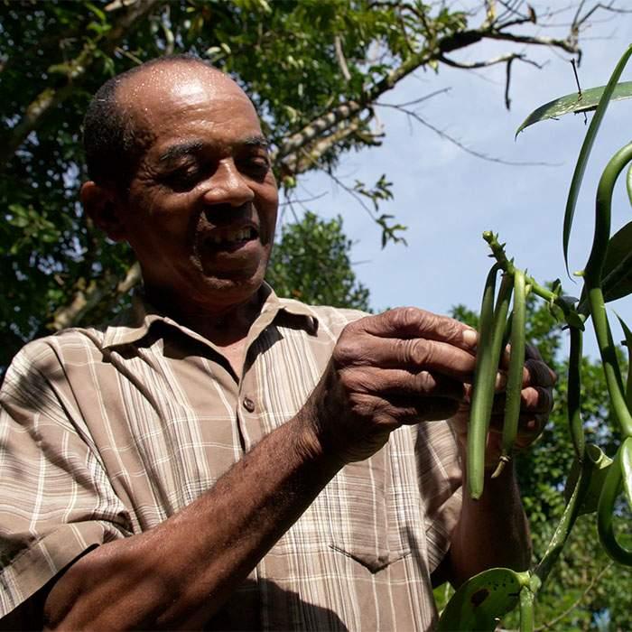 Farmer Francois Ravelonjara