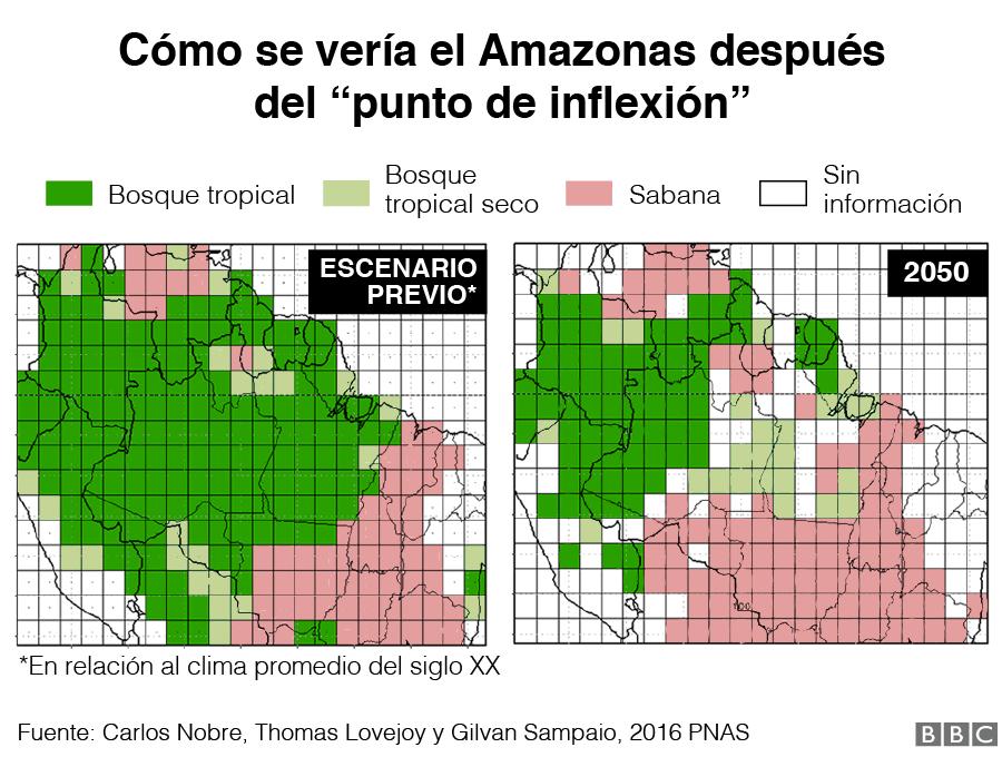 Imágenes de cómo se vería la vegetación del Amazonas después del tipping point