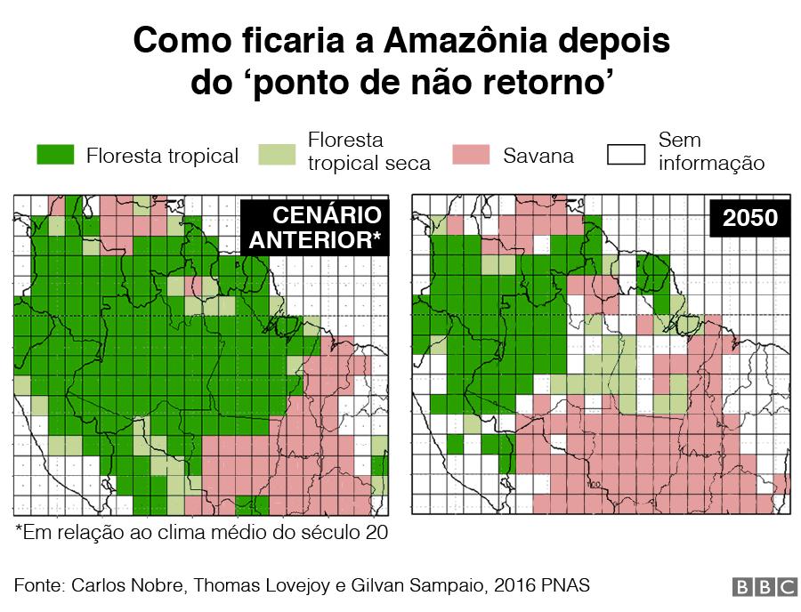 Projeção de como se veria a vegetação da Amazônia depois do tipping point