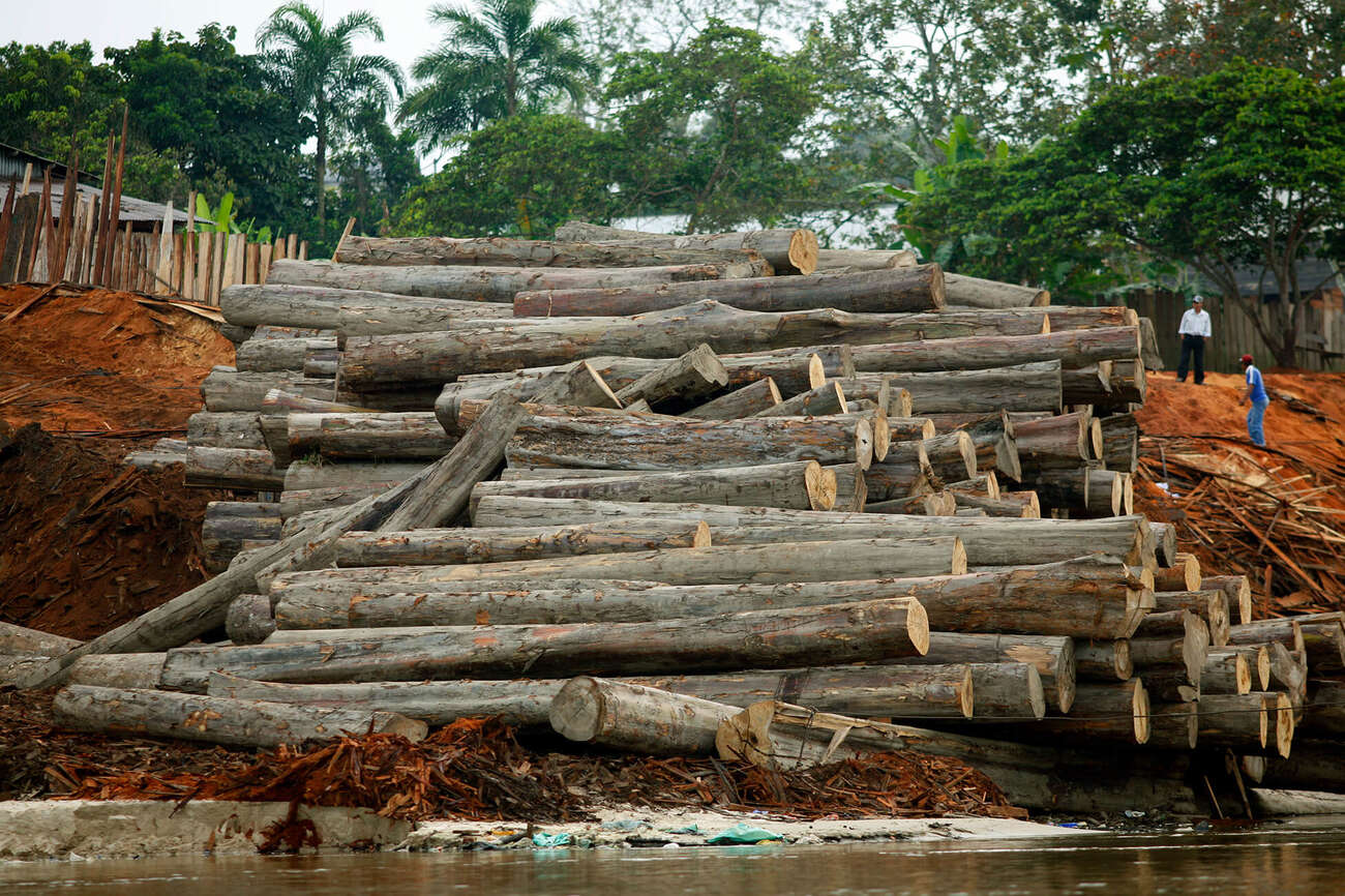 Corte de madeira na Amazônia peruana