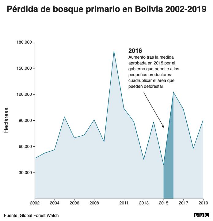 Pérdida de bosque primario en Bolivia 2002-2019