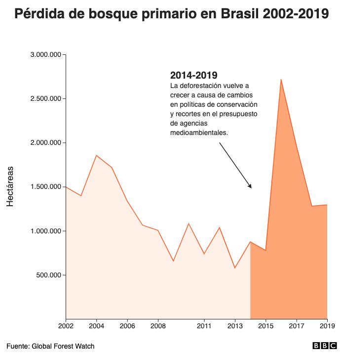 Pérdida de bosque primario en Brasil 2002-2019
