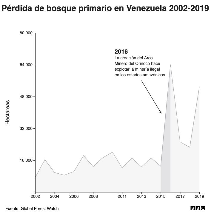 Pérdida de bosque primario en Venezuela 2002-2019