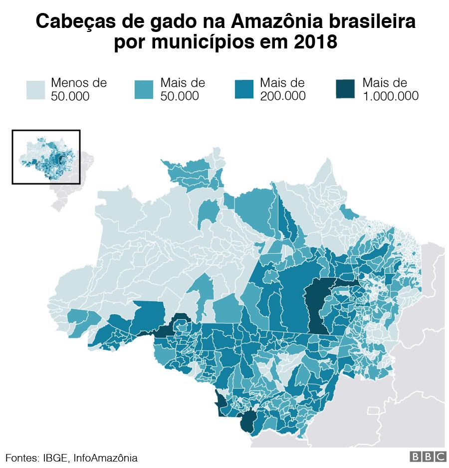 Gráfico de cabeças de gado na região amazônica brasileira