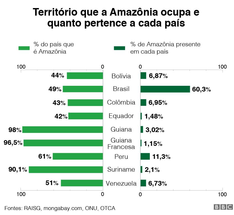 Gráfico do território que a Amazônia ocupa e de quanto pertence a cada país