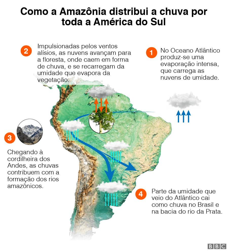 Gráfico sobre como a Amazônia distribui a chuva na América do Sul
