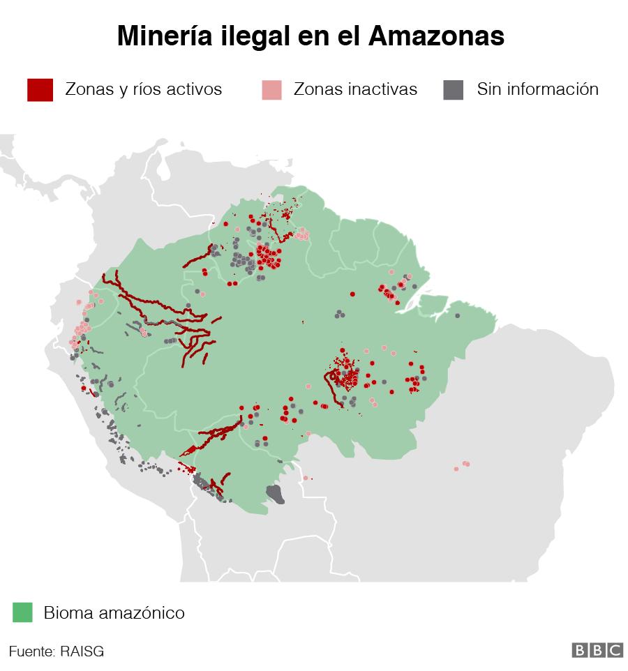 Gráfico de la minería ilegal en el Amazonas