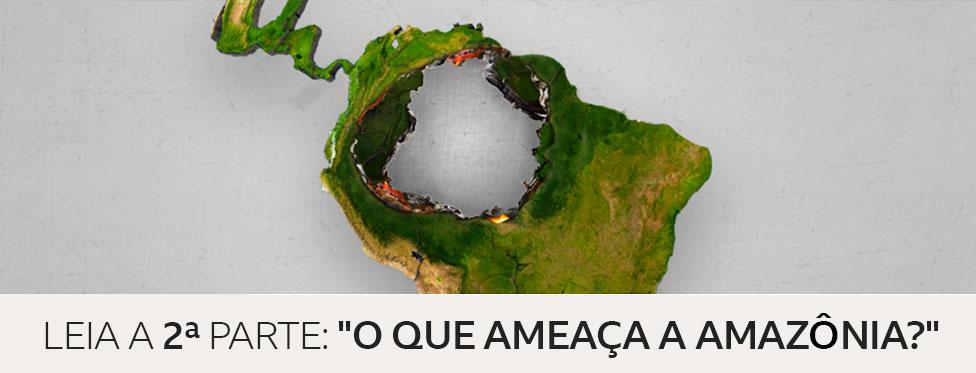 """Leia a segunda parte: """"O que ameaça a Amazônia"""""""