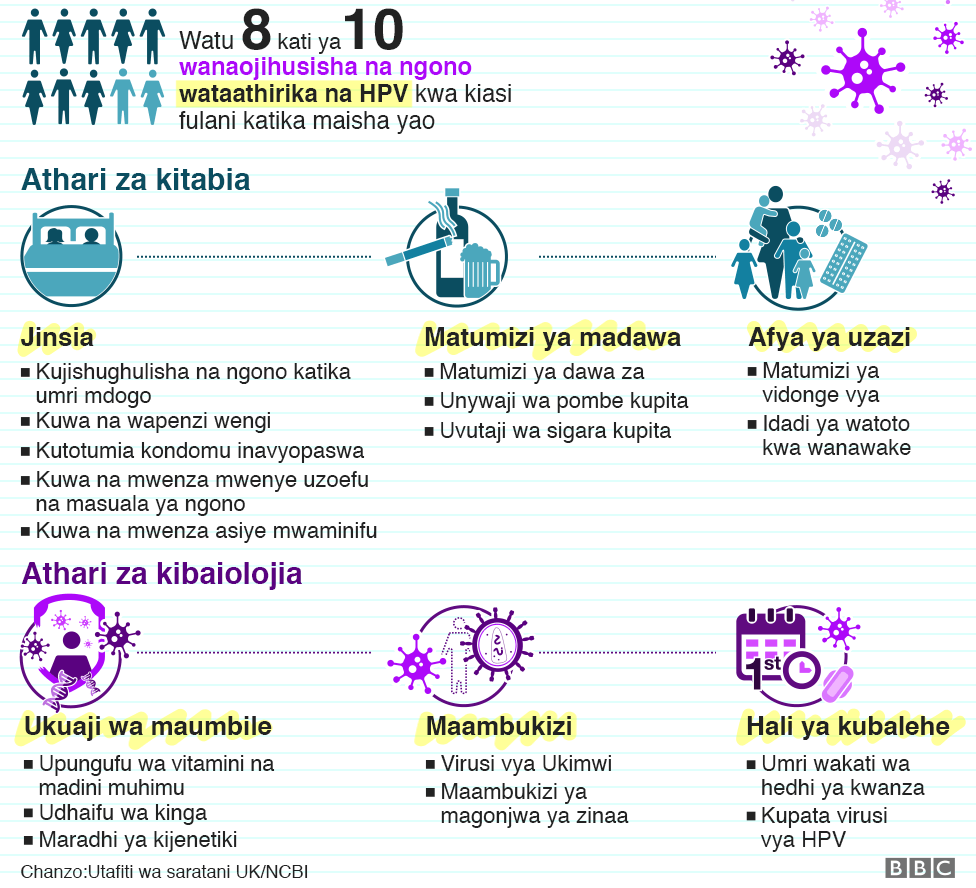 There is an Infographic showing the risk factors that are related to HPV such as sex, substance abuse, reproductive health, body composition, infections and puberty