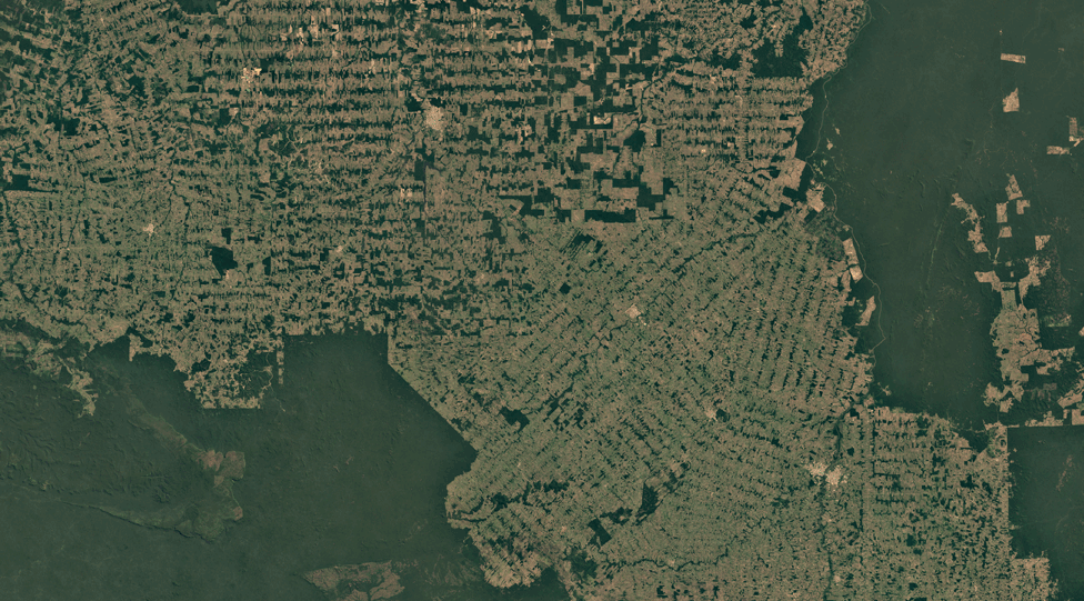Satellite image of Rondonia, Brazil, in 2018