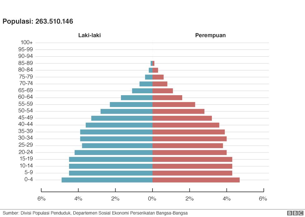 Grafik Populasi Indonesia Tahun 2017