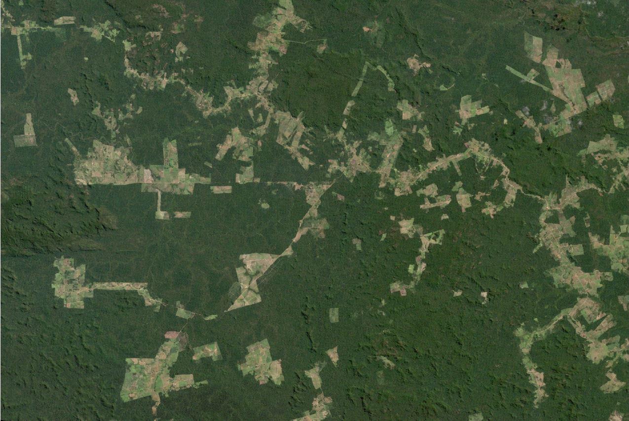 APA Triunfo do Xingu em julho de 2009