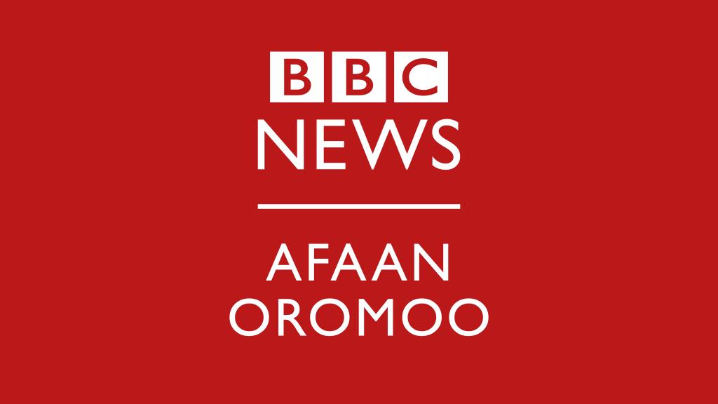 Oduu - BBC News Afaan Oromoo